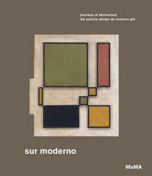 Sur Moderno: Journeys of Abstraction: The Patricia Phelps de Cisneros Gift de Maria Garcia