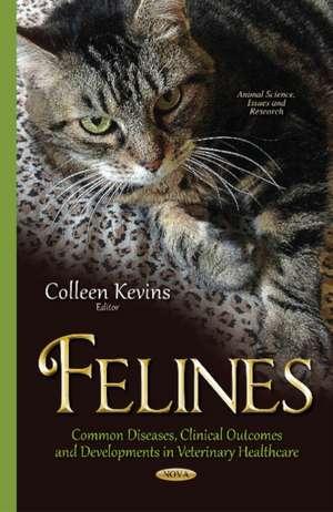 Felines imagine