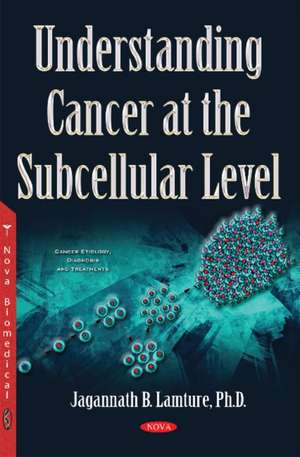 Understanding Cancer at the Subcellular Level