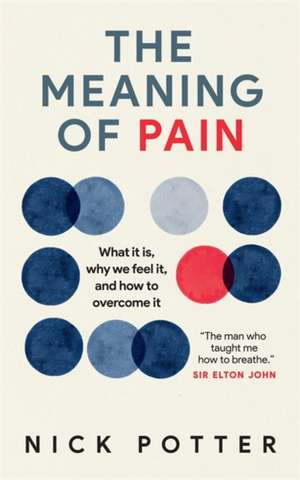 The Meaning of Pain de Nick Potter