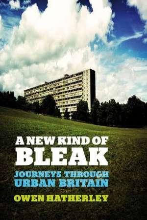 A New Kind of Bleak de Owen Hatherley