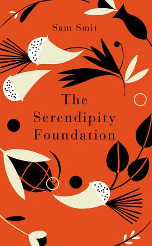 Smit, S: The Serendipity Foundation imagine