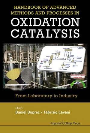 Handbook of Advanced Methods and Processes in Oxidation Catalysis de Daniel Duprez