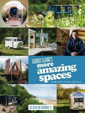 George Clarkes More Amazing Spaces