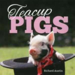 Austin, R: Teacup Pigs imagine