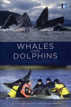 Whales and Dolphins imagine