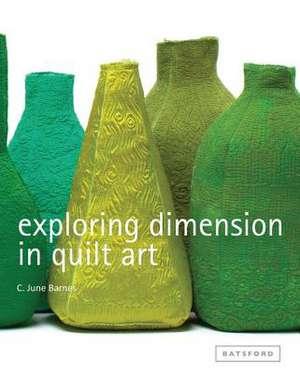Exploring Dimension in Quilt Art de C. June Barnes