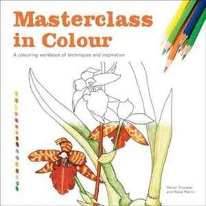Masterclass in Colour de Meriel Thurstan