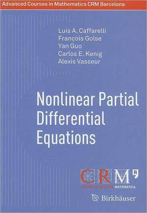 Nonlinear Partial Differential Equations de Luis A. Caffarelli