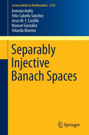 Separably Injective Banach Spaces imagine
