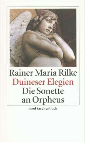 Duineser Elegien / Die Sonette an Orpheus de Rainer Maria Rilke
