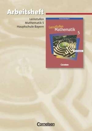 Lernstufen Mathematik 5. Arbeitsheft. Hauptschule Bayern. Neue Ausgabe