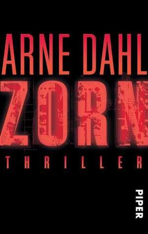 Zorn de Arne Dahl