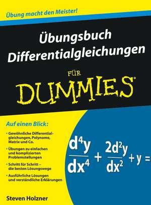 Übungsbuch Differentialgleichungen für Dummies de Steven Holzner