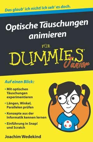 Optische Täuschungen animieren für Dummies Junior de Joachim Wedekind