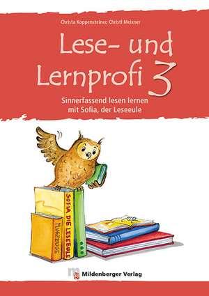 Lese- und Lernprofi 3. Schuelerarbeitsheft