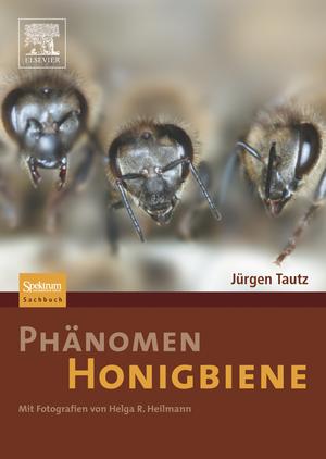 Phaenomen Honigbiene
