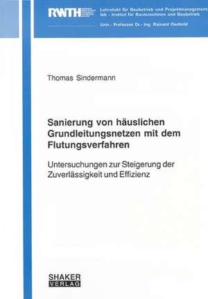 Sanierung von häuslichen Grundleitungsnetzen mit dem Flutungsverfahren de Thomas Sindermann