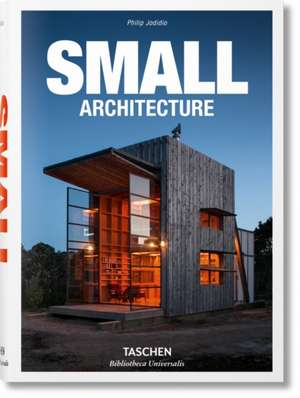 100 Small Buildings imagine
