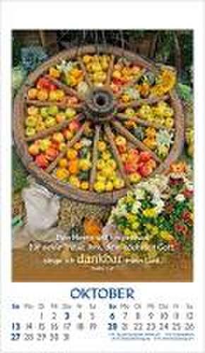 Gottes Wort-Weg-Wahrheit-Leben 2020. Postkarten-Kalender