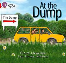 At the Dump Workbook