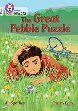 The Great Pebble Puzzle