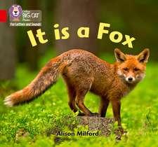 It is a Fox