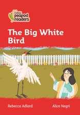 Level 5 - The Big White Bird