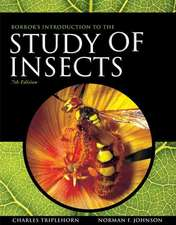 Borror and DeLong's Introduction to the Study of Insects:  Student Edition Holt Environmental Science 2008 2008