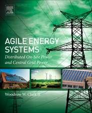 Agile Energy Systems