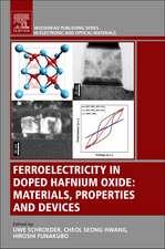 Ferroelectricity in Doped Hafnium Oxide