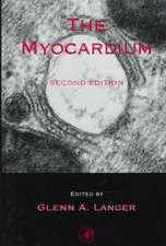 The Myocardium