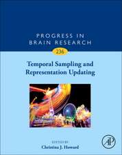 Temporal Sampling and Representation Updating
