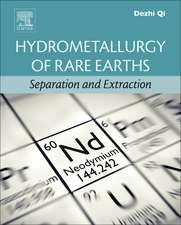 Hydrometallurgy of Rare Earths