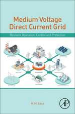 Medium Voltage Direct Current Grid