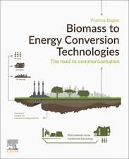 Biomass to Energy Conversion Technologies