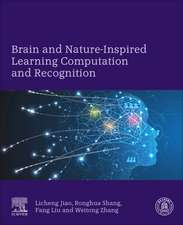 Brain and Nature-Inspired Learning Computation and Recognition