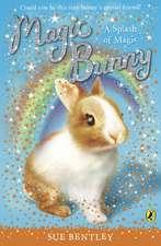 Magic Bunny: A Splash of Magic
