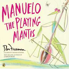 Manuelo the Playing Mantis