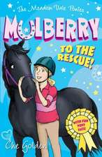 Meadow Vale Ponies: Mulberry to the Rescue