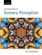 Fundamentals of Sensory Perception