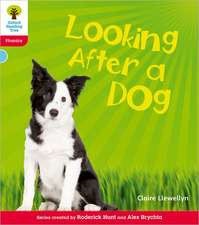 Oxford Reading Tree: Level 4: Floppy's Phonics Non-Fiction: Looking After a Dog