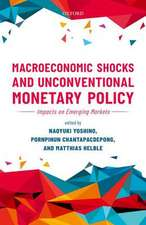 Macroeconomic Shocks and Unconventional Monetary Policy