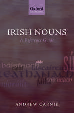 Irish Nouns: A Reference Guide