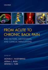 From Acute to Chronic Back Pain: Risk Factors, Mechanisms, and Clinical Implications