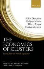 The Economics of Clusters: Lessons from the French Experience