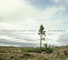 The Oldest Living Things in the World