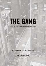 The Gang: A Study of 1,313 Gangs in Chicago