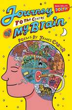 Journey to the Centre of My Brain