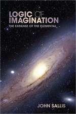 Logic of Imagination